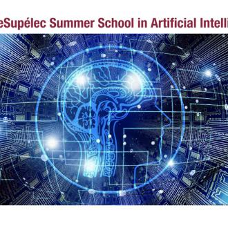 Summer Schools: find out the programs